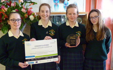 Fingal Student Enterprise Awards